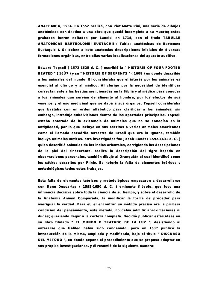 Excelente Anatomía De Un Discurso Ornamento - Imágenes de Anatomía ...
