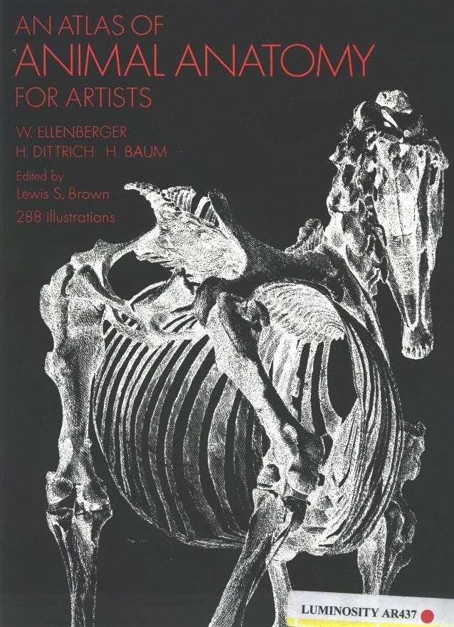 An Atlas Of Anatomy For Artists Pdf