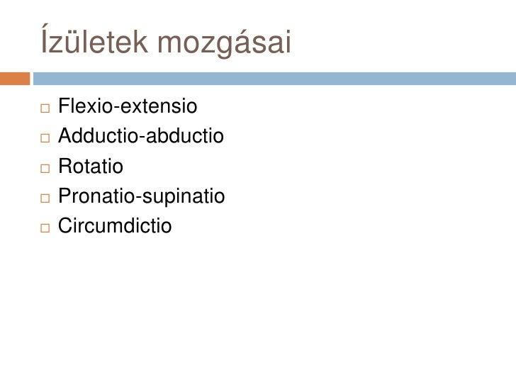 Ízületek mozgásai<br />Flexio-extensio<br />Adductio-abductio<br />Rotatio<br />Pronatio-supinatio<br />Circumdictio<br />