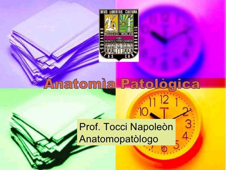 Prof. Tocci NapoleònAnatomopatòlogo