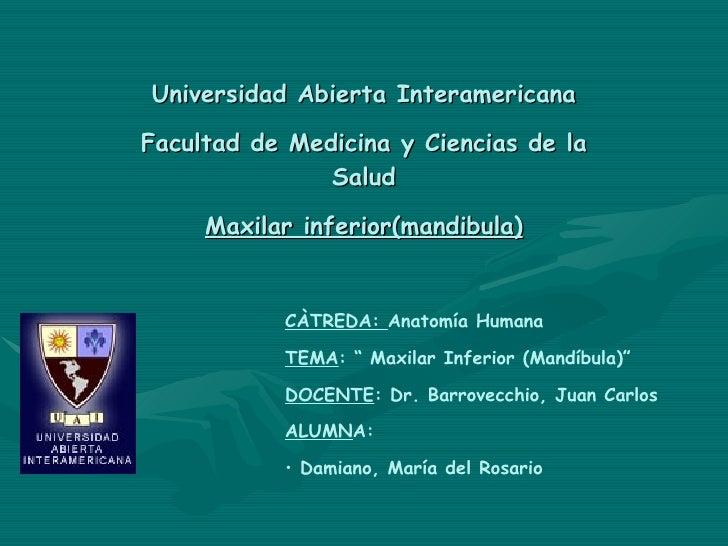 Universidad Abierta Interamericana Facultad de Medicina y Ciencias de la Salud Maxilar inferior(mandibula) <ul><li>CÀTREDA...