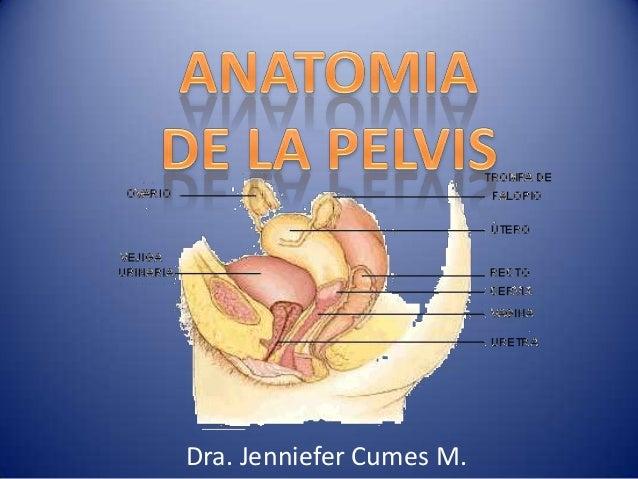 Dra. Jenniefer Cumes M.