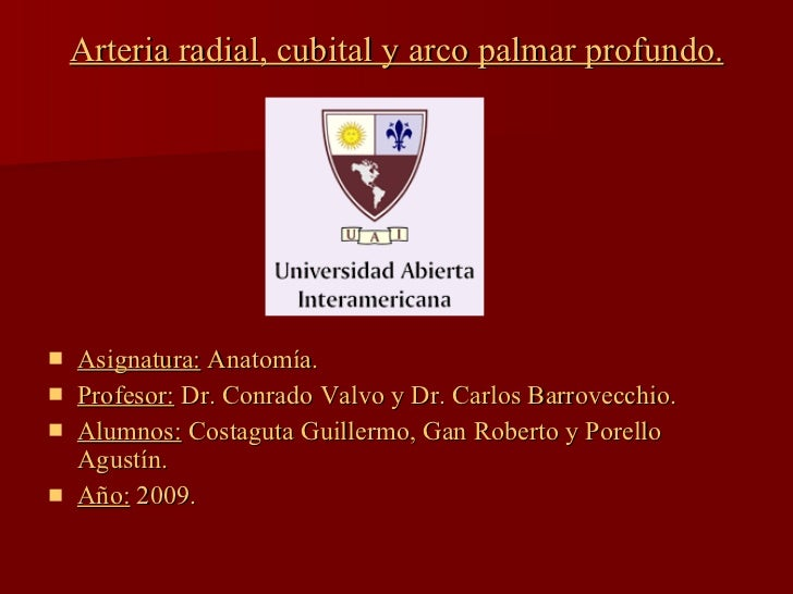 Arteria radial, cubital y arco palmar profundo. <ul><li>Asignatura:  Anatomía. </li></ul><ul><li>Profesor:  Dr. Conrado Va...