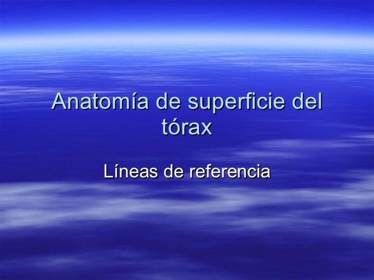 Anatomía de superficie del tórax Líneas de referencia