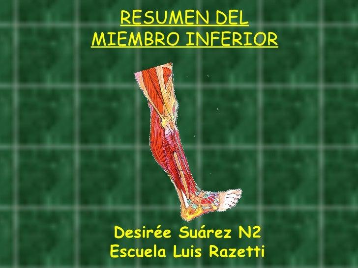 RESUMEN DEL MIEMBRO INFERIOR Desirée Suárez N2 Escuela Luis Razetti