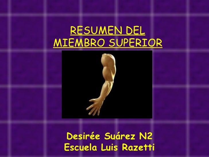 RESUMEN DEL MIEMBRO SUPERIOR Desirée Suárez N2 Escuela Luis Razetti