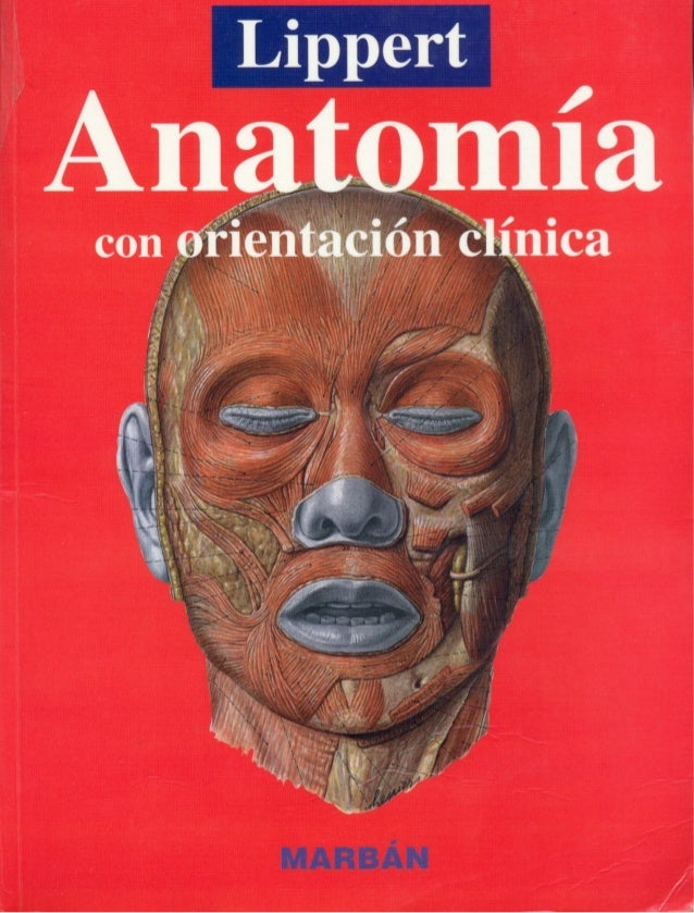 Excelente Con Orientación Funcional Anatomía Regional Motivo ...