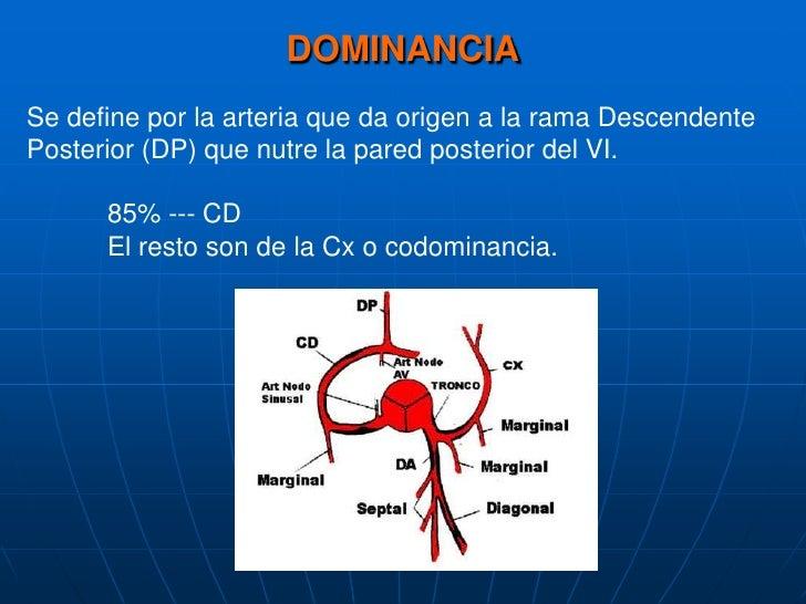 DOMINANCIA<br />Se define por la arteriaquedaorigena la ramaDescendente Posterior (DP) quenutre la pared posterior del VI....