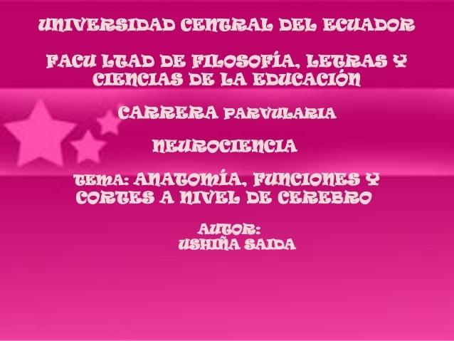 UNIVERSIDAD CENTRAL DEL ECUADORFACU LTAD DE FILOSOFÍA, LETRAS Y    CIENCIAS DE LA EDUCACIÓN      CARRERA PARVULARIA       ...