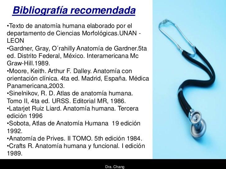 Bibliografía recomendada•Texto de anatomía humana elaborado por eldepartamento de Ciencias Morfológicas.UNAN -LEON•Gardner...