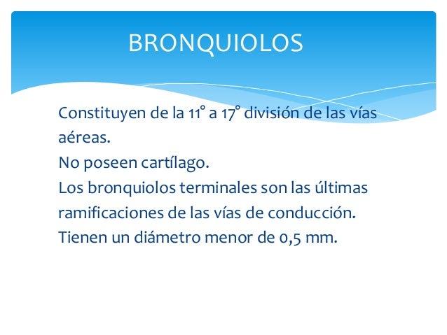 BRONQUIOLOS Constituyen de la 11° a 17° división de las vías aéreas. No poseen cartílago. Los bronquiolos terminales son l...