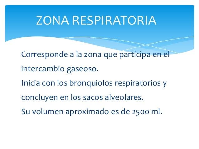 ZONA RESPIRATORIA Corresponde a la zona que participa en el intercambio gaseoso. Inicia con los bronquiolos respiratorios ...