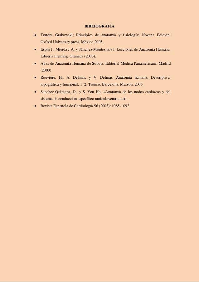 Dorable Anatomía Y Fisiología 8ª Edición De Martini Colección de ...
