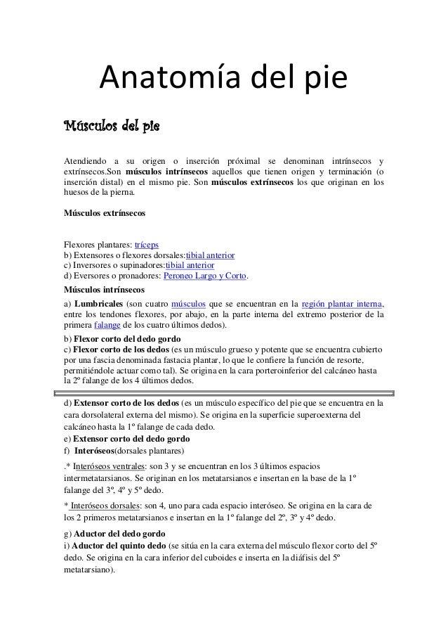 anatoma-del-pie-1-638.jpg?cb=1482310058