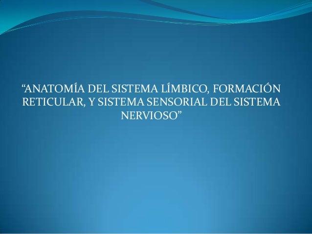"""""""ANATOMÍA DEL SISTEMA LÍMBICO, FORMACIÓN RETICULAR, Y SISTEMA SENSORIAL DEL SISTEMA NERVIOSO"""""""