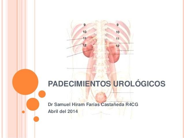 PADECIMIENTOS UROLÓGICOS Dr Samuel Hiram Farías Castañeda R4CG Abril del 2014