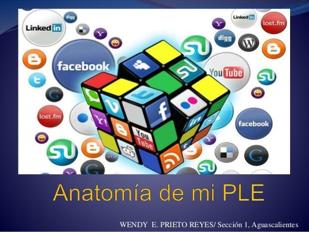 WENDY E. PRIETO REYES/ Sección 1, Aguascalientes
