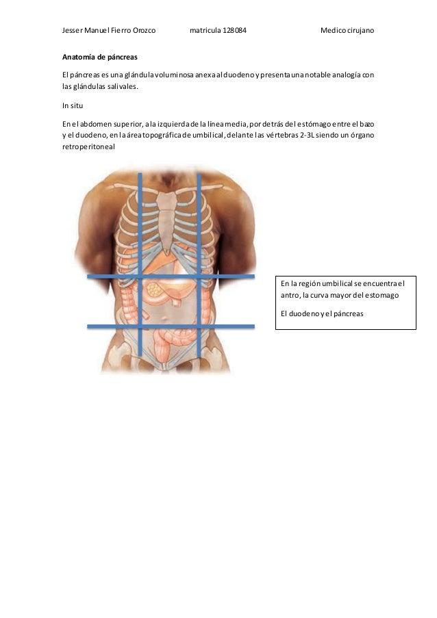 Anatomía de pancreatitis