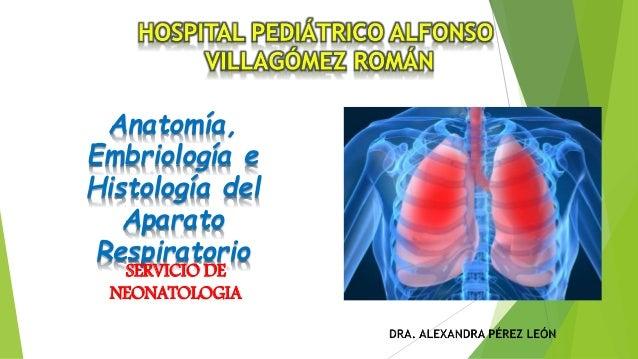 Anatomía, Embriología e Histología del Aparato Respiratorio SERVICIO DE NEONATOLOGIA
