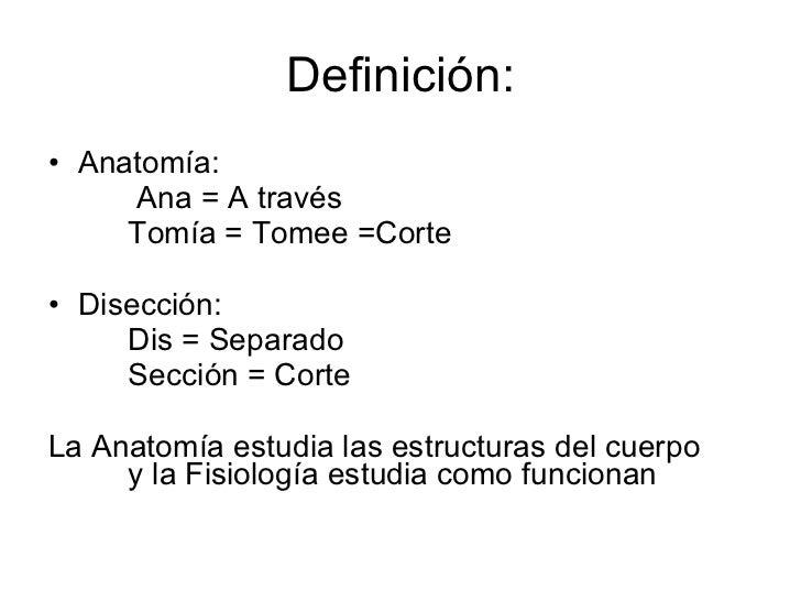 AnatomíA Humana Funcional 1ra Clase