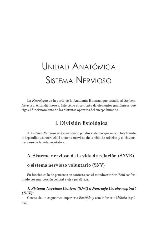 Anatomía humana ii