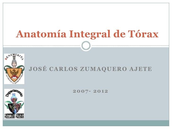 Anatomía Integral de Tórax  JOSÉ CARLOS ZUMAQUERO AJETE           2007- 2012