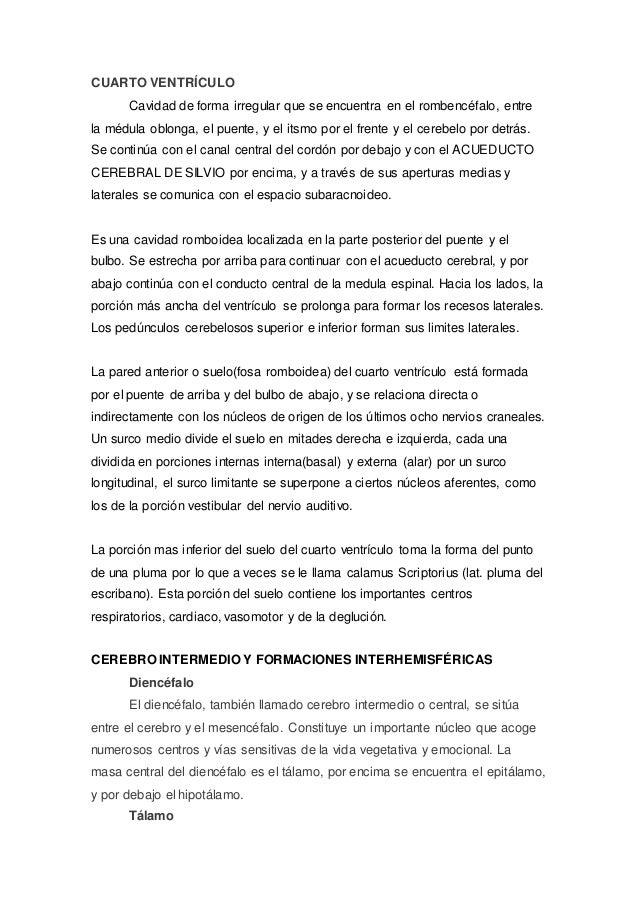Perfecto Anatomía Macroscópica De La Hoja De Revisión Sistema ...