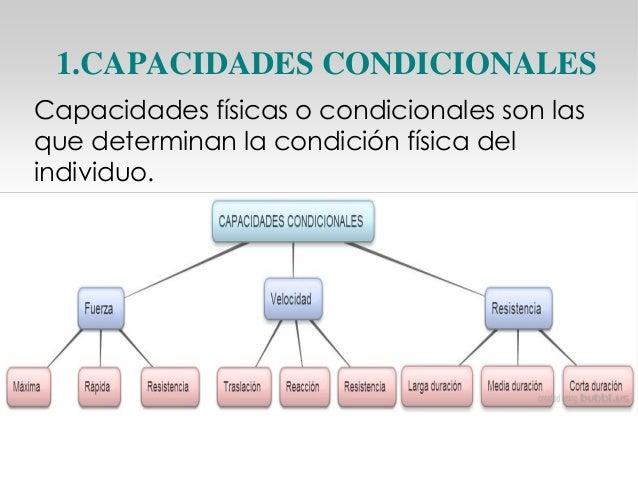Anatomía (pdf)