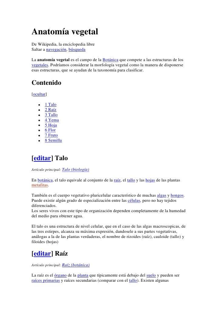 anatoma-vegetal-1-728.jpg?cb=1340717466