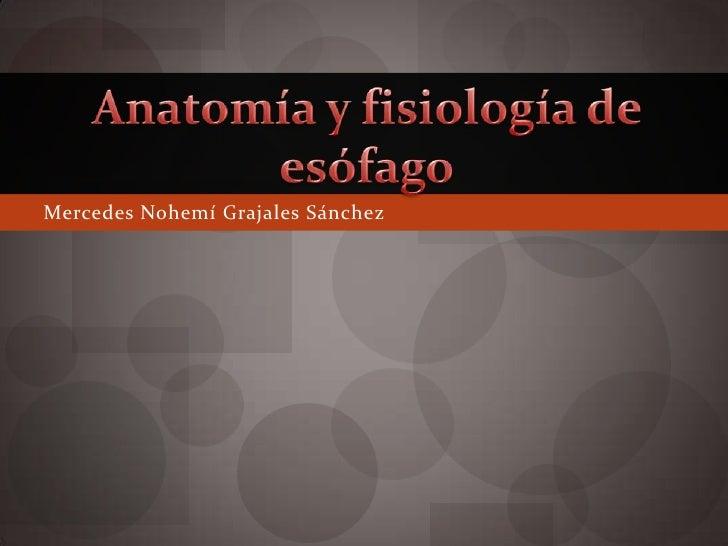 Mercedes Nohemí Grajales Sánchez<br />Anatomía y fisiología de esófago<br />