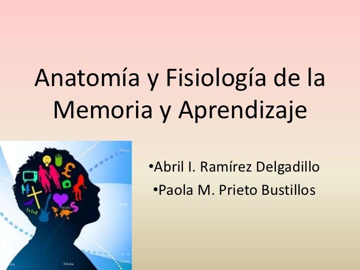 Anatomía y Fisiología de la Memoria y Aprendizaje          •Abril I. Ramírez Delgadillo           •Paola M. Prieto Bustillos