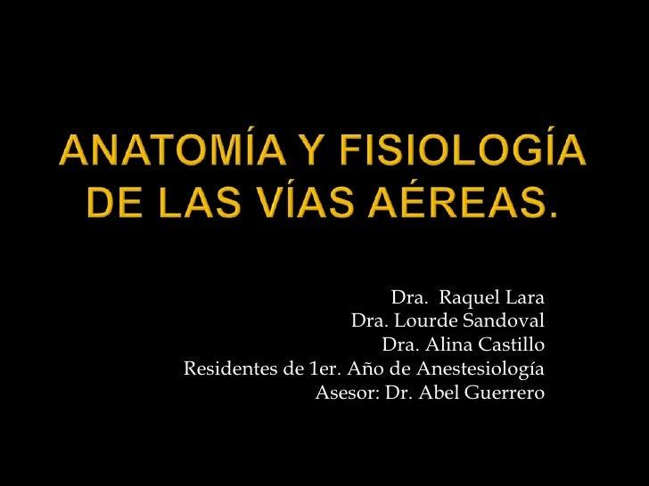 Anatomía y fisiología de lasvíasaéreas.<br />Dra.  Raquel Lara<br />Dra. Lourde Sandoval<br />Dra. Alina Castillo<br />Res...