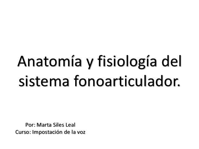 Anatomía y fisiología delsistema fonoarticulador.    Por: Marta Siles LealCurso: Impostación de la voz