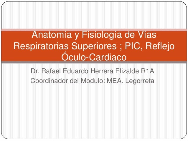 Anatomía y Fisiología de VíasRespiratorias Superiores ; PIC, Reflejo           Óculo-Cardiaco    Dr. Rafael Eduardo Herrer...