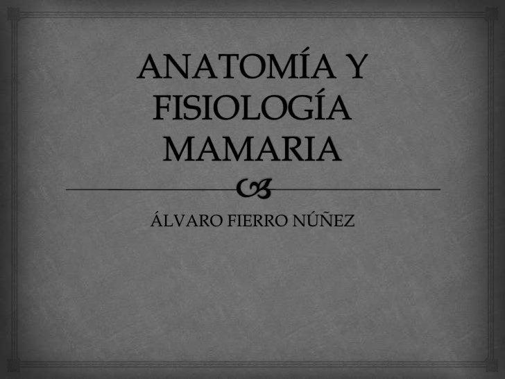 ANATOMÍA Y FISIOLOGÍA MAMARIA<br />ÁLVARO FIERRO NÚÑEZ<br />