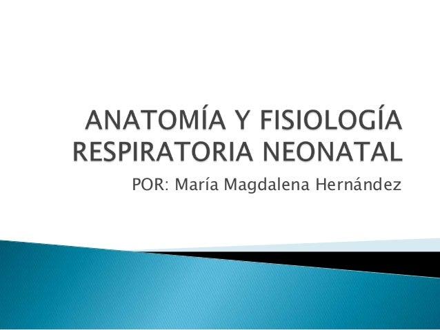 Anatomía y fisiología respiratoria neonatal