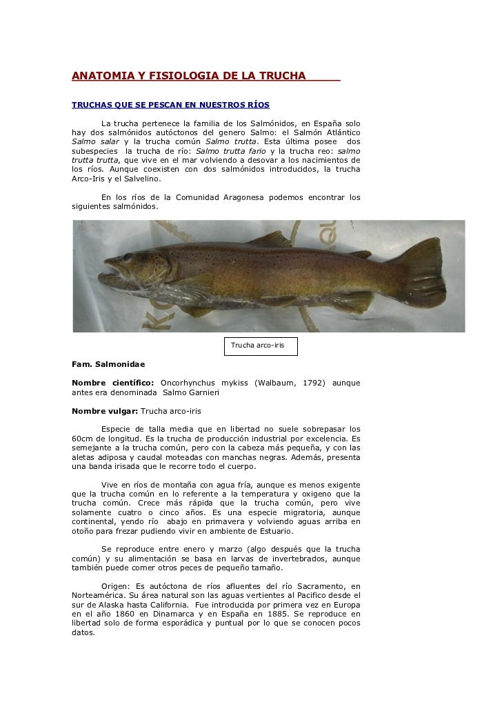 anatomia-y-fisiologia-de-la-trucha-1-728.jpg?cb=1256824353