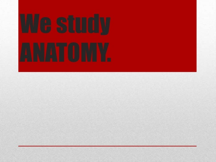 We studyANATOMY.