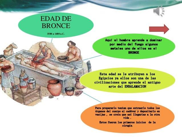 Anatomía y Fisología