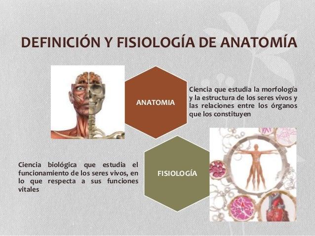 Introduccion a la Anatomia Humana