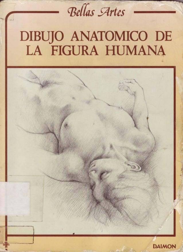 Anatomia artistica dibujo anatomico de la figura humana