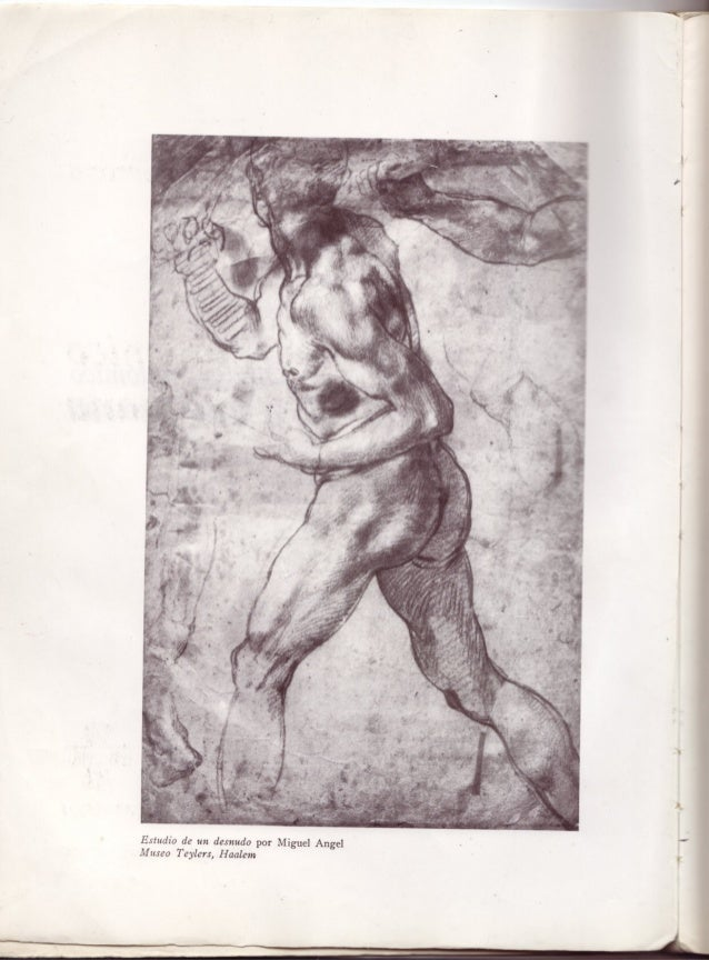 Anatomia artistica-dibujo-anatomico-de-la-figura-humana- Slide 2