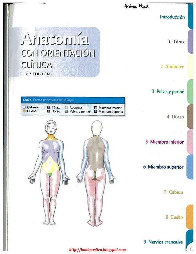 Pdf anatomia humana