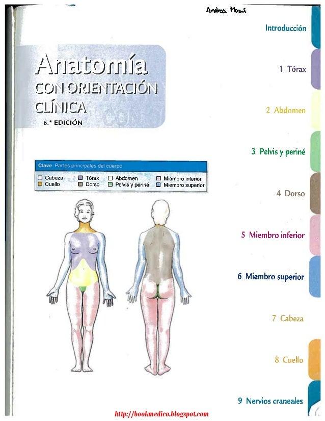 Excelente Anatomía Y Fisiología Humana Elaine Marieb Pdf Fotos ...