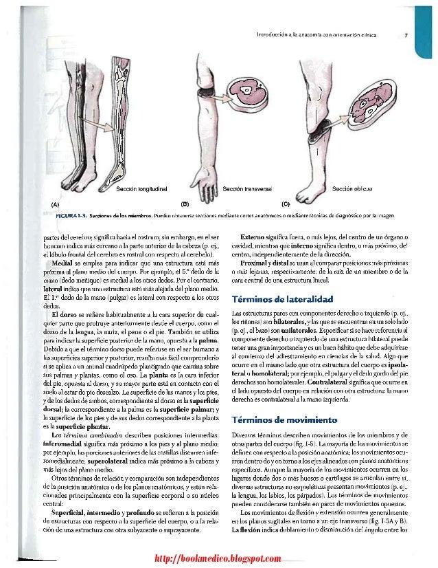 Anatomia humana con orientacion clinica - Moore