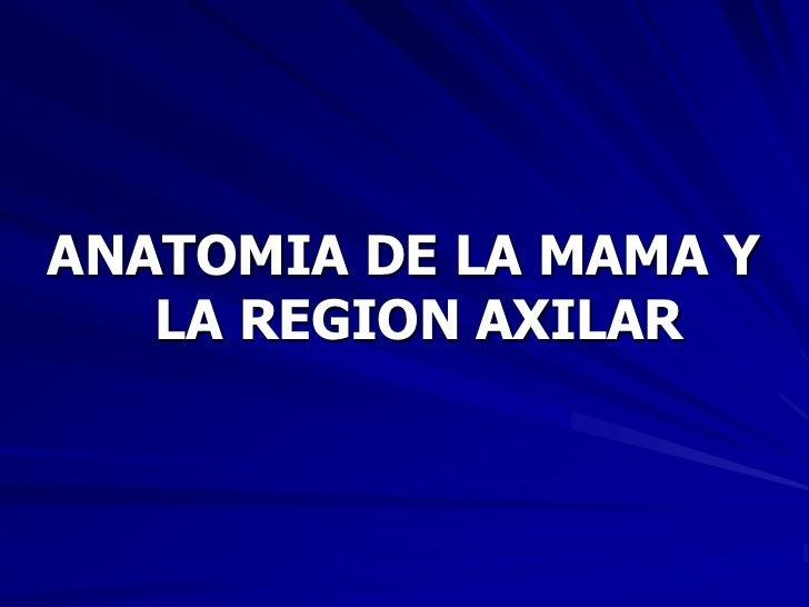 ANATOMIA DE LA MAMA Y   LA REGION AXILAR