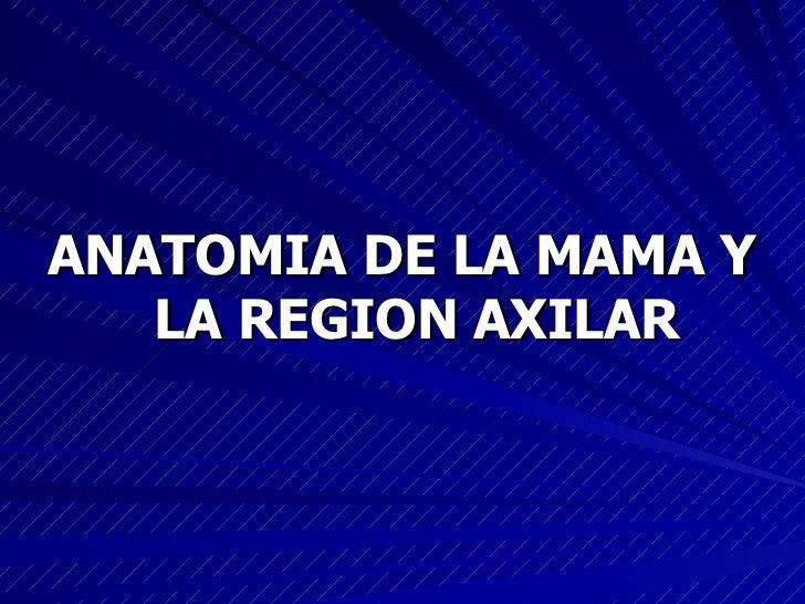 <ul><li>ANATOMIA DE LA MAMA Y LA REGION AXILAR </li></ul>