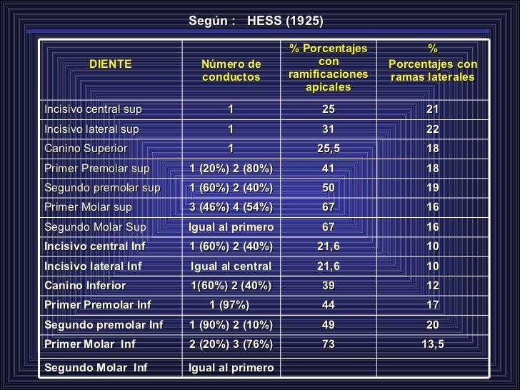 Según :  HESS (1925) Igual al primero Segundo Molar  Inf 13,5 73 2 (20%) 3 (76%) Primer Molar  Inf 20 49 1 (90%) 2 (10%) S...