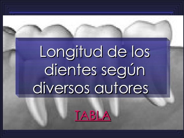 Longitud de los dientes según diversos autores  TABLA