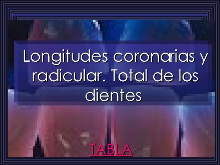 TABLA Longitudes coronarias y radicular. Total de los dientes